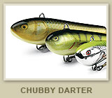 Chubby Darter