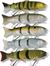 Swimbait BBZ-1 16cm Fast Sink 65g